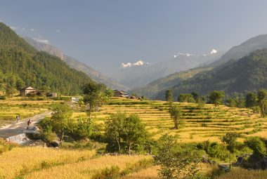 Manaslu and Tsum Valley Trek